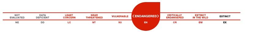 IUCN Endangered