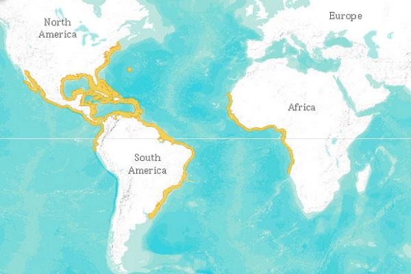 Lemon shark range