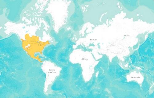 Raccoon distribution map