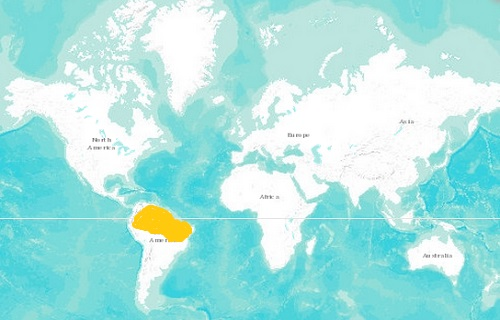 Arapaima Distribution Map