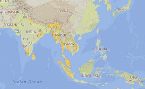 Asian Elephant Distribution